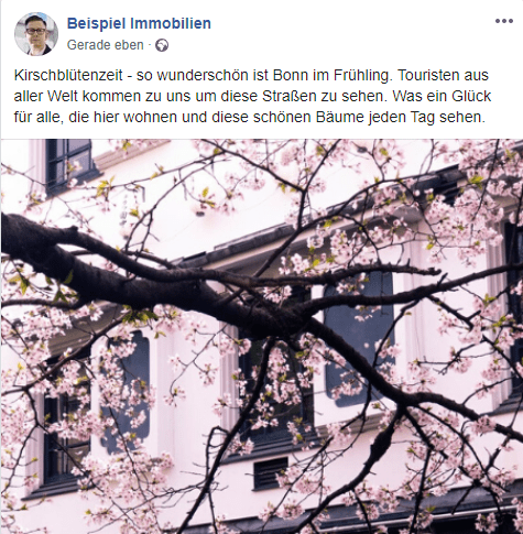 Post Kirschblüte