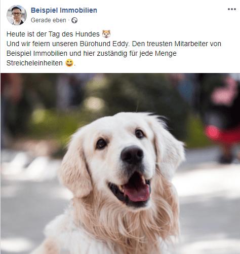Post Tag des Hundes